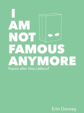Book+Cover+for+I+Am+Not+Famous+Anymore+by+Erin+Dorney+from+Mason+Jar+Press
